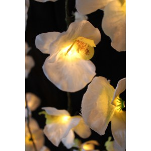Orchid Electric String Lights