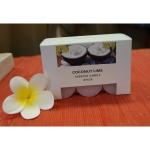 Coconut Lime Scented Candles - (6 Pack)